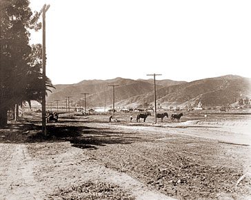 Vintage Photograph of Sunset Boulevard LA